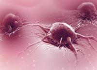 tumour-cells-thumb