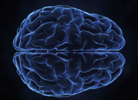 How advances in medical imagery can help  correctly diagnose Alzheimers Disease earlier.