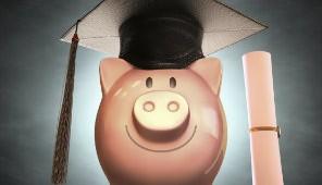Academic Pig